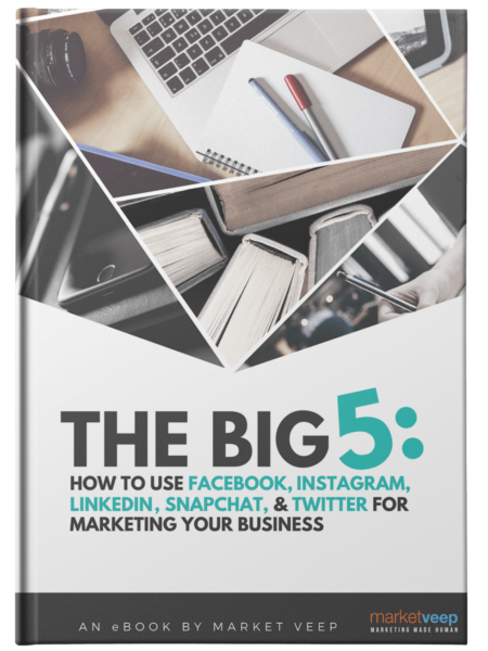 How To Use Facebook, Instagram, Linkedin, Snapchat And Twitter For Marketing Your Business Ebook
